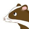 Kavyle's avatar