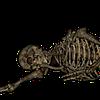 Kawaiicats232's avatar