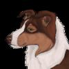 Kayceeee's avatar