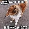 kayden-fl00f's avatar