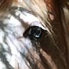 Kayroz's avatar