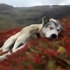 kb445's avatar