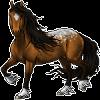 kdaigler's avatar
