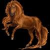 Kdewidow's avatar