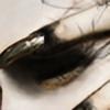 Keaneau's avatar