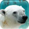 keetonh's avatar
