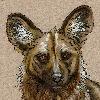 Kenisya's avatar
