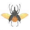 Kepiel137's avatar