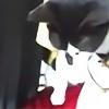 KeyChain4903's avatar