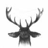 Kgetown's avatar