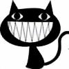 kibbecat