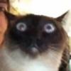 KickTheOlive's avatar