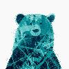kieraillustrations's avatar