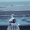 kiiaiire's avatar