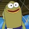kiki-mikk's avatar