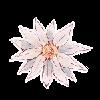 Killasisa's avatar