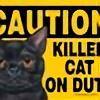 killerkatt25's avatar