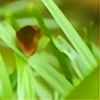 Kilraq's avatar