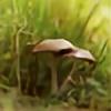 KimberleePhotography's avatar