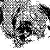 KimJacinto's avatar