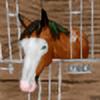 kimtia's avatar
