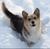 KingOfSleepYo's avatar