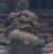 kinos-t's avatar
