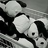 KiraDashieLightsTM's avatar