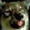 Kishorwolf's avatar