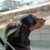 KiteDachs's avatar