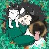 KitganRice's avatar