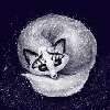 Kitkitcatty's avatar
