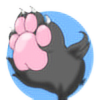 KittenNekoFurry's avatar
