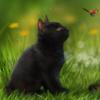KittensAndLadybugs's avatar