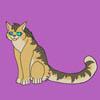 kitty-camera's avatar
