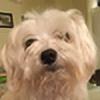 KittyKatzPup556's avatar