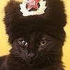 Kittynum's avatar