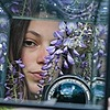 kiwipics's avatar