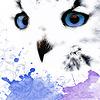 Kleine-Nachteule's avatar