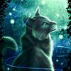 klippii's avatar