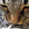 kloklo's avatar