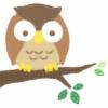 knoctua's avatar