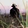 KnoightoFlapis's avatar