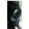 knowlee's avatar