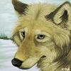 Koahara's avatar
