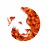 korizarhd's avatar