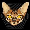 koshnika's avatar