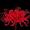 kreahe112's avatar