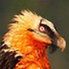 Krediath's avatar