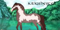 Krigshester's avatar